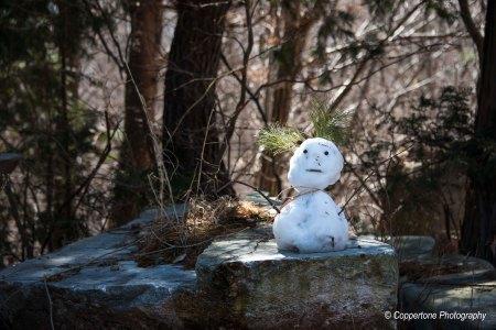 Ulsan Snow