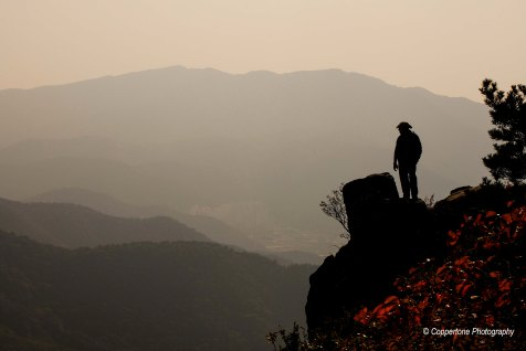 The Lone Hiker